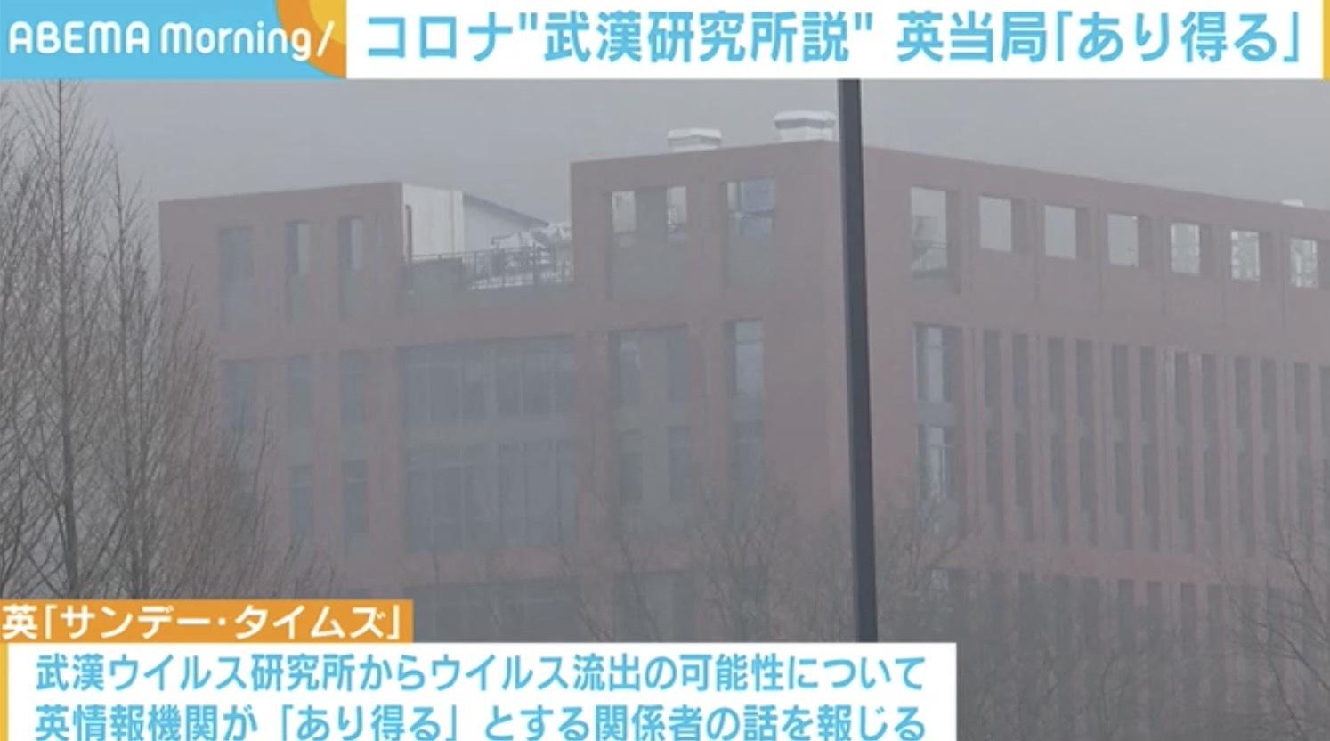 ウイルス 研究 武漢 「新型コロナウイルスの武漢研究所流出説」を徹底検証 中国の協力得られず確証には至らないが、続出する状況証拠(1/8)